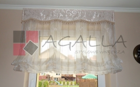 agalla04_1208